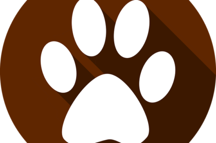 Paw Print | Shih Tzu Facts